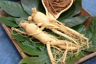 Overview of Panax Ginseng